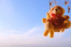 Blå himmel för nallebjörn i morgonen arkivbilder