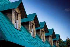 Blå himmel för nytt grönt tak Arkivbild