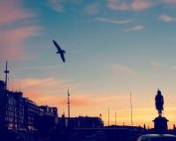 Blå himmel för stad Royaltyfri Foto