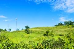 blå himmel för Time-schackningsperiod Nature_green gräs arkivfilmer