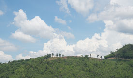 Blå himmel fördunklar över skog Arkivbilder