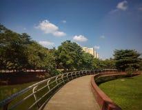 Blå himmel & gräsplannatur Arkivbild