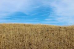 Blå himmel med hjärtaform Arkivfoto