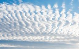 Blå himmel med lockiga moln Royaltyfri Foto