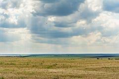Blå himmel med moln, dalen med visset gräs och gräsplanvegetation, molnig dag för sommar, naturlandskap royaltyfri bild