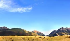 Blå himmel och Absaroka berg Arkivbilder