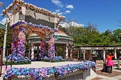 Blå himmel och blommor Royaltyfri Fotografi