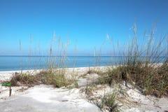 Blå himmel och hav utöver en gräs- sanddyn arkivbild