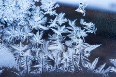 Blå isblommabakgrund Fotografering för Bildbyråer