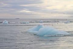 Blå isisflak i havet Arkivbilder