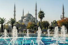 blå istanbul moské minarets Arkivfoto