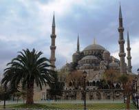 blå istanbul moskékalkon Royaltyfria Foton