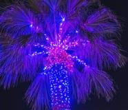 blå jul Arkivfoto