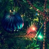 Blå julboll på xmas-träd Royaltyfria Bilder