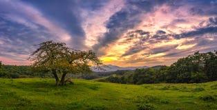 Blå kantgångallé, scenisk solnedgång arkivbilder