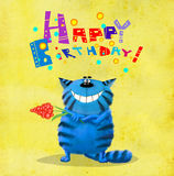 Blå katt för födelsedagkort med blomman Arkivbild