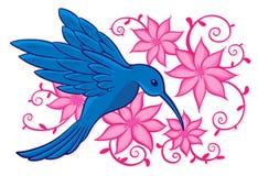 Blå kolibri Arkivbilder
