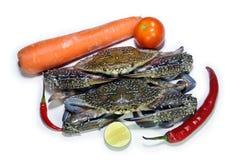 Blå krabba med grönsakingrediensen som isoleras på vit Arkivbilder