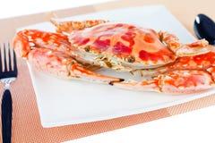 Blå krabba på en platta Arkivbild
