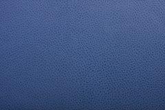 blå läderyttersida Fotografering för Bildbyråer