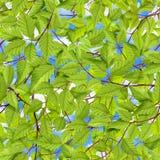 blå lövverkskysikt arkivbild