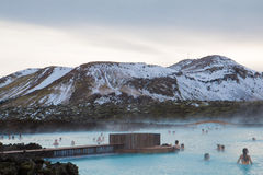Blå lagun Rexlaxing Arkivbild