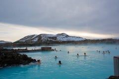 Blå lagun Rexlaxing Fotografering för Bildbyråer