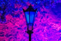 blå lampa Royaltyfria Foton