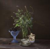 blå livstid fortfarande Royaltyfri Fotografi