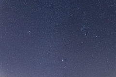 Blå mörk natthimmel med många stjärnor Konstellationer Orion Arkivbild