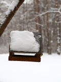 Blå mes som matar i vinter Arkivfoto