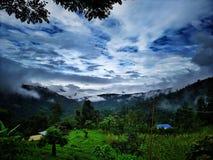 Blå molnig himmel med djupt - grön skog royaltyfri fotografi