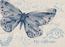 Blå molnig vattenfärgfjäril Arkivfoto