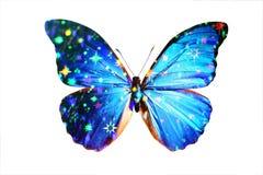 blå morpho Royaltyfria Foton