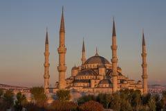 blå moské Arkivbild