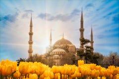 Blå moskésultanahmet Camii, Istanbul, Turkiet arkivfoto