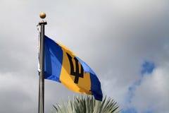 Blå och gul flagga Royaltyfri Bild