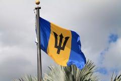 Blå och gul flagga Arkivbilder