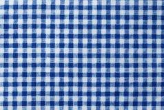 Blå och vit skogsarbetare Plaid Seamless Pattern Royaltyfri Bild