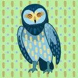 blå owl Royaltyfri Foto
