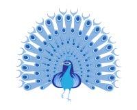 blå påfågel Royaltyfri Bild