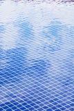 blå pölsimning Arkivbilder