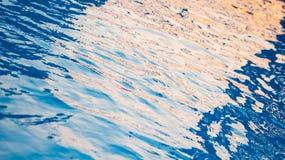 blå pölsimning Arkivfoton