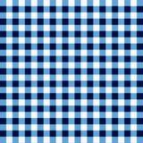 Blå picknicktorkduk Arkivbilder
