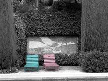 blå pink Arkivfoto