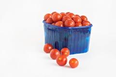 Blå plast- ask mycket av isolerade tomater Arkivbilder