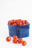 Blå plast- ask mycket av isolerade tomater Arkivbild