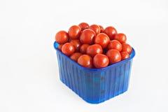 Blå plast- ask mycket av isolerade tomater Royaltyfria Bilder