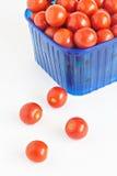 Blå plast- ask mycket av isolerade tomater Royaltyfria Foton