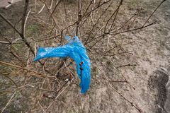 Blå plastpåse som hänger på en buske arkivbilder
